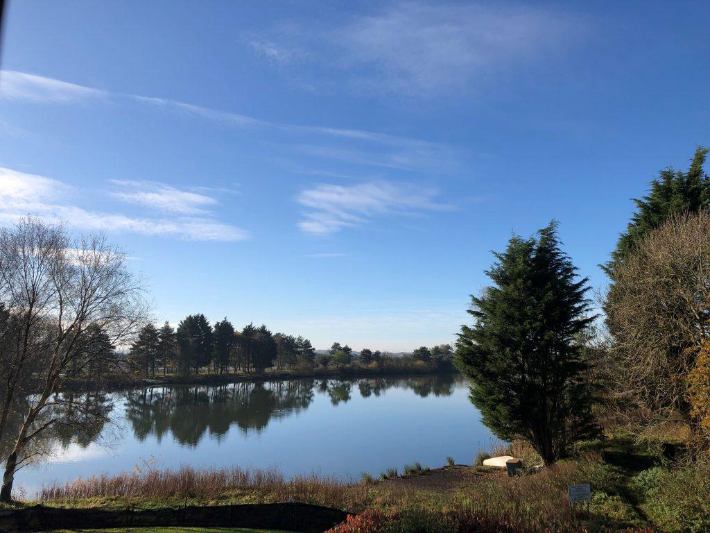 Grassroots Lake View